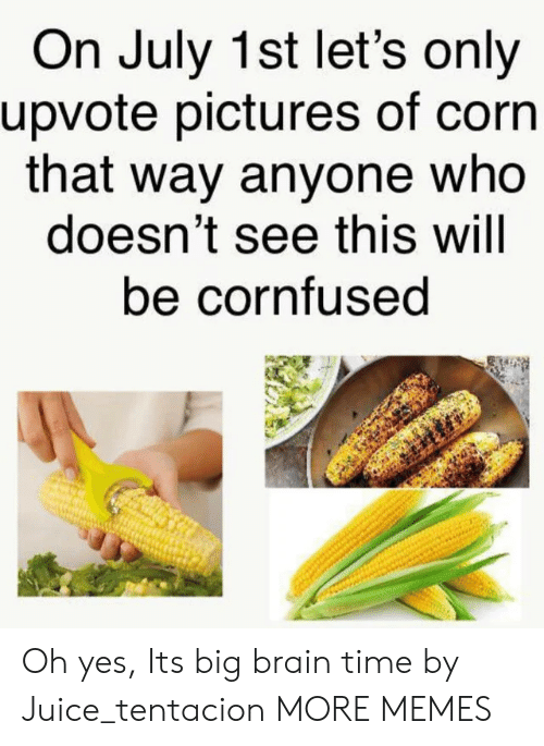 Dank, Juice, and Memes: On July 1st let's only  upvote pictures of corn  that way anyone who  doesn't see this will  be cornfused Oh yes, Its big brain time by Juice_tentacion MORE MEMES