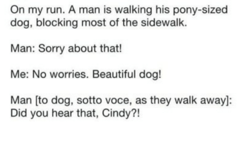 Blocking: On my run. A man is walking his pony-sized  dog, blocking most of the sidewalk.  Man: Sorry about that!  Me: No worries. Beautiful dog!  Man [to dog, sotto voce, as they walk away]:  Did you hear that, Cindy?!