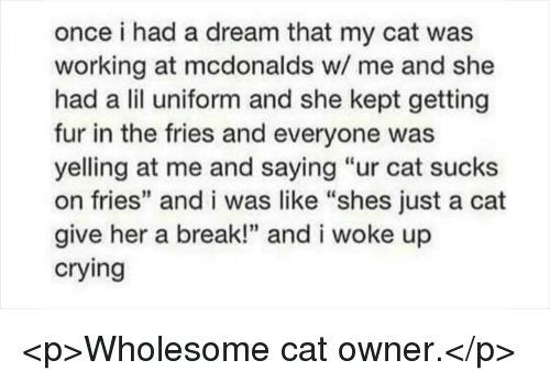 "A Dream, Crying, and McDonalds: once i had a dream that my cat was  working at mcdonalds w/ me and she  had a lil uniform and she kept getting  fur in the fries and everyone was  yelling at me and saying ""ur cat sucks  on fries"" and i was like ""shes just a cat  give her a break!"" and i woke up  crying <p>Wholesome cat owner.</p>"