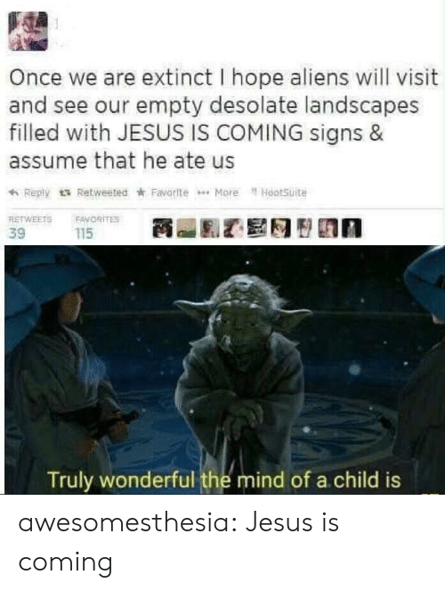 Jesus, Tumblr, and Aliens: Once we are extinct I hope aliens will visit  and see our empty desolate landscapes  filled with JESUS IS COMING signs &  assume that he ate us  Reply tRetweeted Favorite More HootSuite  RETWEETS  FAVORITES  115  39  Truly wonderful the mind of a child is awesomesthesia:  Jesus is coming