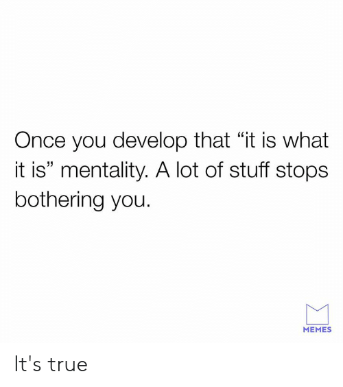 """bothering: Once you develop that """"it is what  it is"""" mentality. A lot of stuff stops  bothering you.  MEMES It's true"""