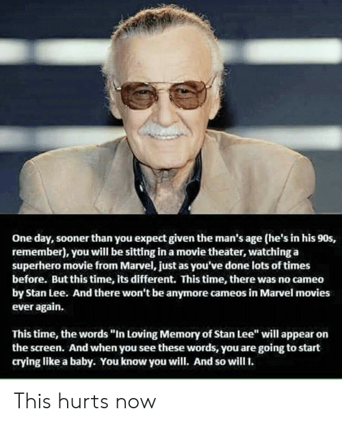 "Crying, Memes, and Movies: One day, sooner than you expect given the man's age (he's in his 90s,  remember), you will be sitting in a movie theater, watching a  superhero movie from Marvel, just as you've done lots of times  before. But this time, its different. This time, there was no cameo  by Stan Lee. And there won't be anymore cameos in Marvel movies  ever again.  This time, the words ""In Loving Memory of Stan Lee"" will appear on  the screen. And when you see these words, you are going to start  crying like a baby. You know you will. And so will. This hurts now"