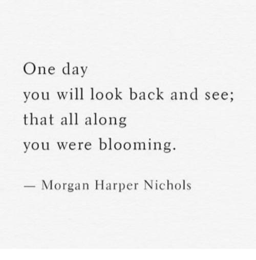 Back, One, and One Day: One day  you will look back and see;  that all along  you were blooming  Morgan Harper Nichols