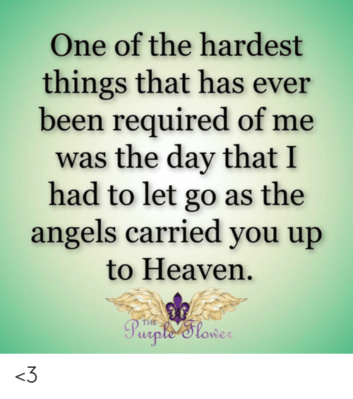 Heaven, Memes, and Angels: One of the hardest  things that has ever  been required of me  was the day that I  had to let go as the  angels carried you up  to Heaven  THE  Purple'tower <3