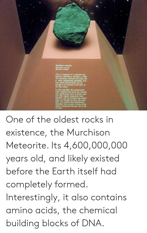 acids: One of the oldest rocks in existence, the Murchison Meteorite. Its 4,600,000,000 years old, and likely existed before the Earth itself had completely formed. Interestingly, it also contains amino acids, the chemical building blocks of DNA.