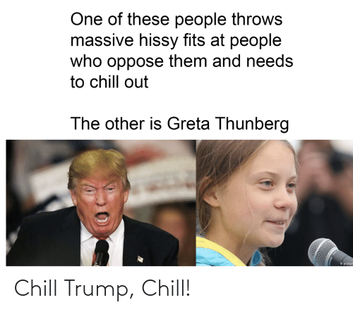 Hissy: One of these people throws  massive hissy fits at people  who oppose them and needs  to chill out  The other is Greta Thunberg  O pictur Chill Trump, Chill!