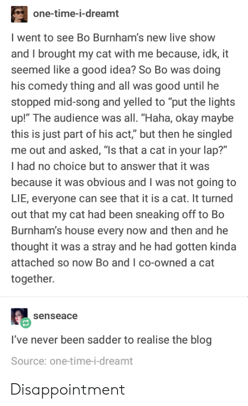 """No Choice But: one-time-i-dreamt  went to see Bo Burnham's new live show  and I brought my cat with me because, idk, it  seemed like a good idea? So Bo was doing  his comedy thing and all was good until he  stopped mid-song and yelled to """"put the lights  up!"""" The audience was all. """"Haha, okay maybe  this is just part of his act,"""" but then he singled  me out and asked, """"Is that a cat in your lap?""""  I had no choice but to answer that it was  because it was obvious and I was not going to  LIE, everyone can see that it is a cat. It turned  out that my cat had been sneaking off to Bo  Burnham's house every now and then and he  thought it was a stray and he had gotten kinda  attached so now Bo and I co-owned a cat  together.  senseace  I've never been sadder to realise the blog  Source: one-time-i-dreamt Disappointment"""