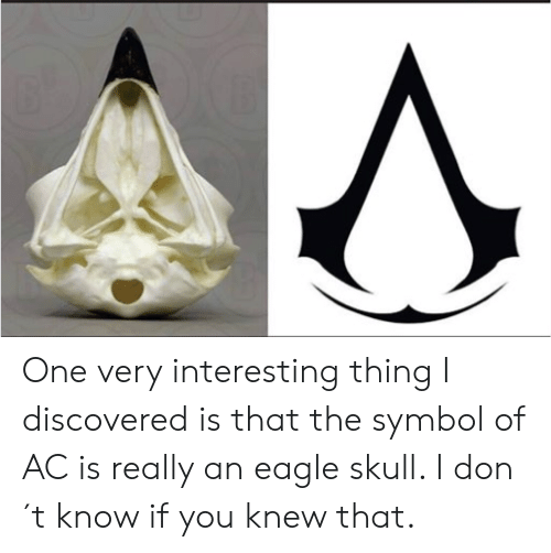 Eagle, Skull, and One: One very interesting thing I discovered is that the symbol of AC is really an eagle skull. I don´t know if you knew that.