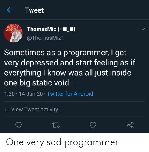 Sad: One very sad programmer