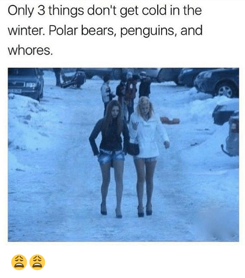 Whoreing: Only 3 things don't get cold in the  winter. Polar bears, penguins, and  whores. 😩😩