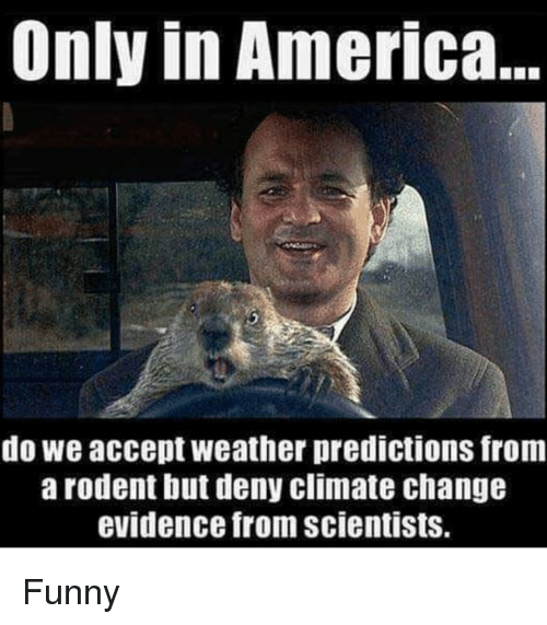 deny: Only in America  do we accept weather predictions from  arodent but deny climate change  evidence from scientists. Funny