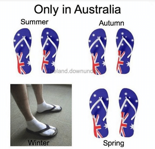 Memes, Summer, and Australia: Only in Australia  Summer  Autumn  eland.downunde  Spring  nte