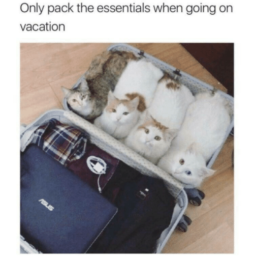Vacation, Essentials, and  Pack: Only pack the essentials when going on  vacation