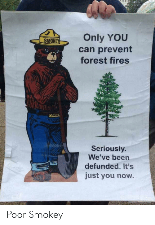 Prevent: Only YOU  SMOKEY  can prevent  forest fires  NIMIM  USMOR  Seriously.  We've been  defunded. It's  just you now. Poor Smokey