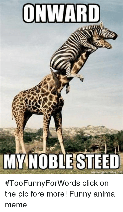 Click, Funny, and Meme: ONWARD  MY NOBLESTEED #TooFunnyForWords click on the pic fore more! Funny animal meme