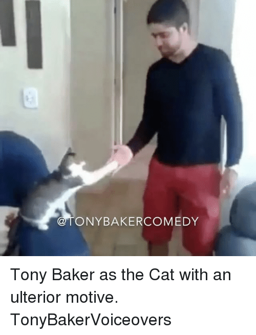 Bakerate: ONYBAKERCOMEDY Tony Baker as the Cat with an ulterior motive. TonyBakerVoiceovers