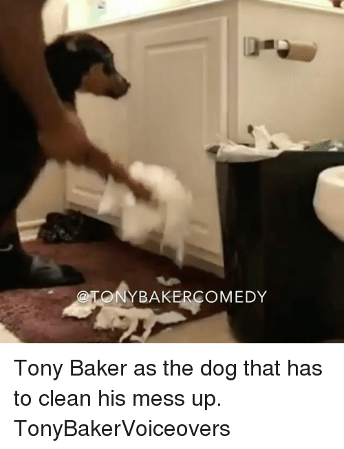 Bakerate: ONYBAKERCOMEDY Tony Baker as the dog that has to clean his mess up. TonyBakerVoiceovers
