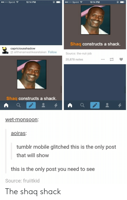 Shaq: ooo Sprint  ooo Sprint  10:14 PM  10:14 PM  Shaq constructs a shack.  capriciousshadow  allthenamesilikearetaken Follow  Source: the-nut-job  20,878 notes  Shaq constructs a shack.  wet-monsoon:  aoiras:  tumblr mobile glitched this is the only post  that will show  this is the only post you need to see  Source: fruitkid The shaq shack