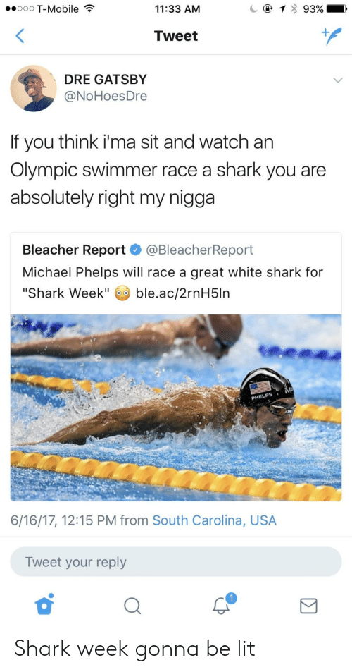 """Lit, My Nigga, and T-Mobile: ooo T-Mobile  11:33 AM  Tweet  DRE GATSBY  @NoHoesDre  If you think i'ma sit and watch an  Olympic swimmer race a shark you are  absolutely right my nigga  Bleacher Report @BleacherReport  Michael Phelps will race a great white shark for  """"Shark Week"""" ble.ac/2rnH5ln  PHELPS  6/16/17, 12:15 PM from South Carolina, USA  Tweet your reply Shark week gonna be lit"""