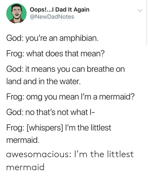 Dad, God, and Omg: Oops!...I Dad lt Again  NewDadNotes  God: you're an amphibian  Frog: what does that mean?  God: it means you can breathe on  land and in the water.  Frog: omg you mean I'm a mermaid?  God: no that's not what l-  Frog: [whispers] I'm the littlest  mermaid awesomacious:  I'm the littlest mermaid