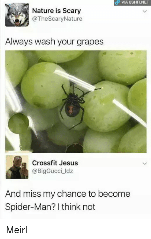 Crossfit: OP VIA 8SHIT.NET  Nature is Scary  @TheScaryNature  Always wash your grapes  Crossfit Jesus  @BigGucci ldz  And miss my chance to become  Spider-Man? I think not Meirl