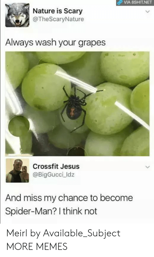 Crossfit: OP VIA 8SHIT.NET  Nature is Scary  @TheScaryNature  Always wash your grapes  Crossfit Jesus  @BigGucci ldz  And miss my chance to become  Spider-Man? I think not Meirl by Available_Subject MORE MEMES