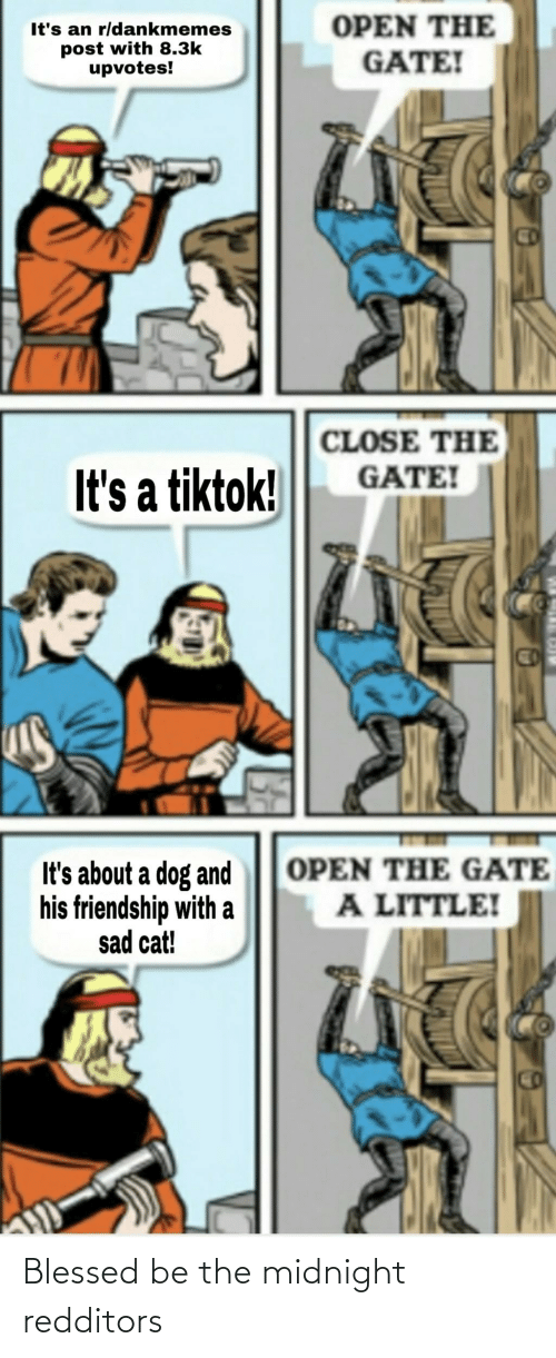 3K Upvotes: OPEN THE  GATE!  It's an r/dankmemes  post with 8.3k  upvotes!  CD  CLOSE THE  GATE!  It's a tiktok!  OPEN THE GATE  It's about a dog and  his friendship with a  sad cat!  A LITTLE!  CO Blessed be the midnight redditors
