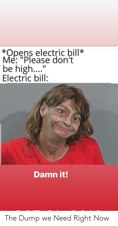 "Opens: *Opens electric bill*  Me: ""Please don't  be high....  Electric bill:  Damn it! The Dump we Need Right Now"