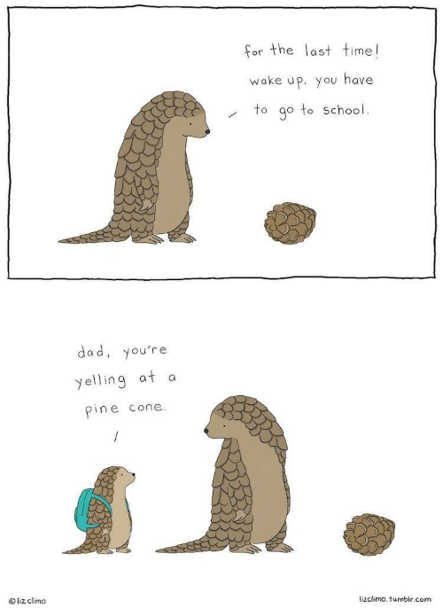 Lizclimo Tumblr: or the last time!  wake up. you have  to go to School.  dad, you're  yelling at a  pine cone  O liz climo  lizclimo. tumblr.conm