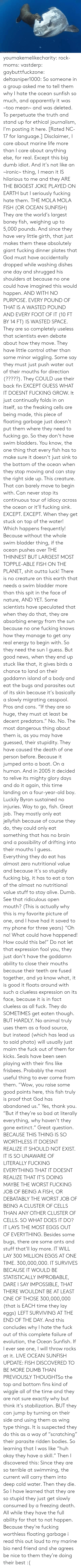 "Is My Favorite: ORihad Herrma M  S youmakemelikecharity:  rock-moms:  vastderp:  gaybuttfuckzone:  deltasniper1000:  So someone in a group asked me to tell them why I hate the ocean sunfish so much, and apparently it was ~too mean~ and was deleted. To perpetuate the truth and stand up for ethical journalism, I'm posting it here. [Rated NC-17 for language.]  Disclaimer, I care about marine life more than I care about anything else, for real. Except this big dumb idiot. And it's not like an ~ironic~ thing, I mean it IS hilarious to me and they ARE THE BIGGEST JOKE PLAYED ON EARTH but I seriously fucking hate them.  THE MOLA MOLA FISH (OR OCEAN SUNFISH)  They are the world's largest boney fish, weighing up to 5,000 pounds. And since they have very little girth, that just makes them these absolutely giant fucking dinner plates that God must have accidentally dropped while washing dishes one day and shrugged his shoulders at because no one could have imagined this would happen. AND WITH NO PURPOSE. EVERY POUND OF THAT IS A WASTED POUND AND EVERY FOOT OF IT (10 FT BY 14 FT) IS WASTED SPACE.  They are so completely useless that scientists even debate about how they move. They have little control other than some minor wiggling. Some say they must just push water out of their mouths for direction (?????). They COULD use their back fin EXCEPT GUESS WHAT IT DOESNT FUCKING GROW. It just continually folds in on itself, so the freaking cells are being made, this piece of floating garbage just doesn't put them where they need to fucking go.   So they don't have swim bladders. You know, the one thing that every fish has to make sure it doesn't just sink to the bottom of the ocean when they stop moving and can stay the right side up. This creature. That can barely move to begin with. Can never stop its continuous tour of idiocy across the ocean or it'll fucking sink. EXCEPT. EXCEPT. When they get stuck on top of the water! Which happens frequently! Because without the whole swim bladder thing, if the ocean pushes over THE THINNEST BUT LARGEST MOST TOPPLE-ABLE FISH ON THE PLANET, shit outta luck! There is no creature on this earth that needs a swim bladder more than this spit in the face of nature, AND YET. Some scientists have speculated that when they do that, they are absorbing energy from the sun because no one fucking knows how they manage to get any real energy to begin with. So they need the sun I guess. But good news, when they end up stuck like that, it gives birds a chance to land on their goddamn island of a body and eat the bugs and parasites out of its skin because it's basically a slowly migrating cesspool. Pros and cons.   ""If they are so huge, they must at least be decent predators."" No. No. The most dangerous thing about them is, as you may have guessed, their stupidity. They have caused the death of one person before. Because it jumped onto a boat. On a human. And in 2005 it decided to relive its mighty glory days and do it again, this time landing on a four-year-old boy. Luckily Byron sustained no injuries. Way to go, fish. Great job.  They mostly only eat jellyfish because of course they do, they could only eat something that has no brain and a possibility of drifting into their mouths I guess. Everything they do eat has almost zero nutritional value and because it's so stupidly fucking big, it has to eat a ton of the almost no nutritional value stuff to stay alive. Dumb. See that ridiculous open mouth? (This is actually why this is my favorite picture of one, and I have had it saved to my phone for three years) ""Oh no! What could have happened! How could this be!"" Do not let that expression fool you, they just don't have the goddamn ability to close their mouths because their teeth are fused together, and ya know what, it is good it floats around with such a clueless expression on its face, because it is in fact clueless as all fuck.  They do SOMETIMES get eaten though. BUT HARDLY. No animal truly uses them as a food source, but instead (which has lead us to said photo) will usually just maim the fuck out of them for kicks. Seals have been seen playing with their fins like frisbees. Probably the most useful thing to ever come from them.   ""Wow, you raise some good points here, this fish truly is proof that God has abandoned us."" Yes, thank you. ""But if they're so bad at literally everything, why haven't they gone extinct."" Great question.   BECAUSE THIS THING IS SO WORTHLESS IT DOESNT REALIZE IT SHOULD NOT EXIST. IT IS SO UNAWARE OF LITERALLY FUCKING EVERYTHING THAT IT DOESNT REALIZE THAT IT'S DOING MAYBE THE WORST FUCKING JOB OF BEING A FISH, OR DEBATABLY THE WORST JOB OF BEING A CLUSTER OF CELLS THAN ANY OTHER CLUSTER OF CELLS. SO WHAT DOES IT DO? IT LAYS THE MOST EGGS OUT OF EVERYTHING. Besides some bugs, there are some ants and stuff that'll lay more. IT WILL LAY 300 MILLION EGGS AT ONE TIME. 300,000,000. IT SURVIVES BECAUSE IT WOULD BE STATISTICALLY IMPROBABLE, DARE I SAY IMPOSSIBLE, THAT THERE WOULDNT BE AT LEAST ONE OF THOSE 300,000,000 (that is EACH time they lay eggs) LEFT SURVIVING AT THE END OF THE DAY.   And this concludes why I hate the fuck out of this complete failure of evolution, the Ocean Sunfish. If I ever see one, I will throw rocks at it.   LIVE OCEAN SUNFISH UPDATE: FISH DISCOVERED TO BE MORE DUMB THAN PREVIOUSLY THOUGHTSo  the top and bottom fins kind of wiggle all of the time and they are not  sure exactly why but think it's stabilization. BUT they can jump by  turning on their side and using them as  wing type things. It is suspected they do this as a way of ""scratching""  their parasite ridden bodies. So learning that I was like ""huh okay they  have a skill."" Then I discovered this: Since they  are so terrible at swimming, the current will carry them into deep cold  water. Then they die. So I have learned that they are so stupid they  just get slowly consumed by a freezing death. All while they have the  full ability for that to not happen. Because they're fucking worthless  floating garbage    i read this out loud to my marine bio nerd friend and she agrees   be nice to them they're doing their best :("