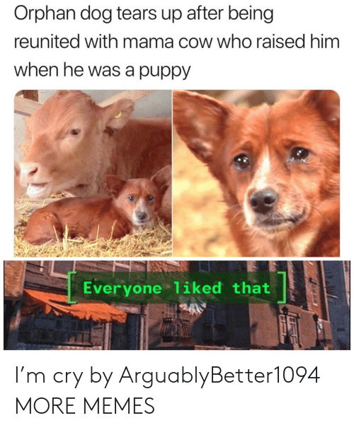 orphan: Orphan dog tears up after being  reunited with mama cow who raised him  when he was a puppy  Everyone 1iked that I'm cry by ArguablyBetter1094 MORE MEMES