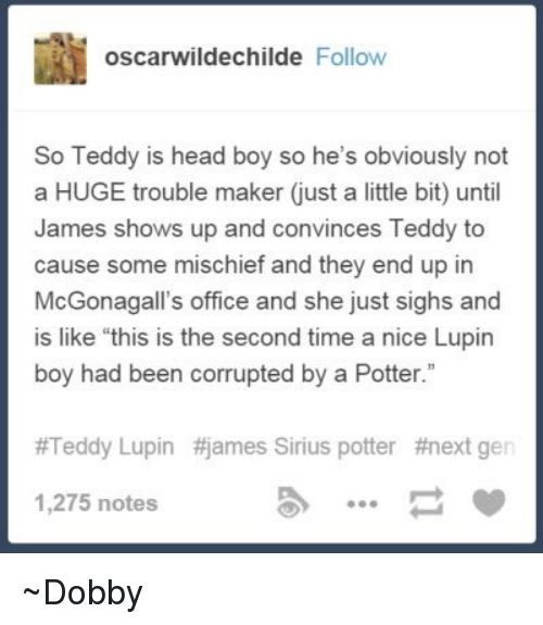 """next gen: oscarwildechilde Follow  So Teddy is head boy so he's obviously not  a HUGE trouble maker just a little bit) until  James shows up and convinces Teddy to  cause some mischief and they end up in  McGonagall's office and she just sighs and  is like """"this is the second time a nice Lupin  boy had been corrupted by a Potter.""""  #Teddy Lupin #james Sirius potter #next gen  1,275 notes ~Dobby"""