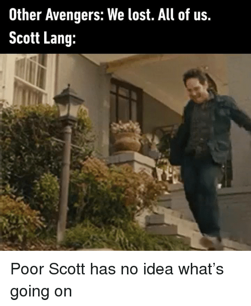 Dank, Lost, and Avengers: Other Avengers: We lost. All of us.  Scott Lang: Poor Scott has no idea what's going on