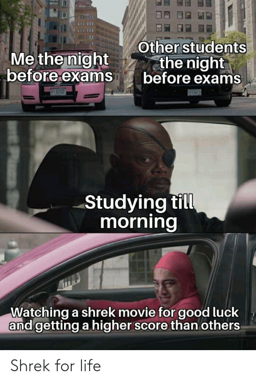 Life, Reddit, and Shrek: Other students  the night  before exams  Me the night  before exanms  IG152  SEPI  Studying till  morning  Watching a shrek movie for good luck  and getting a higher score than others  wE Plasa S Shrek for life