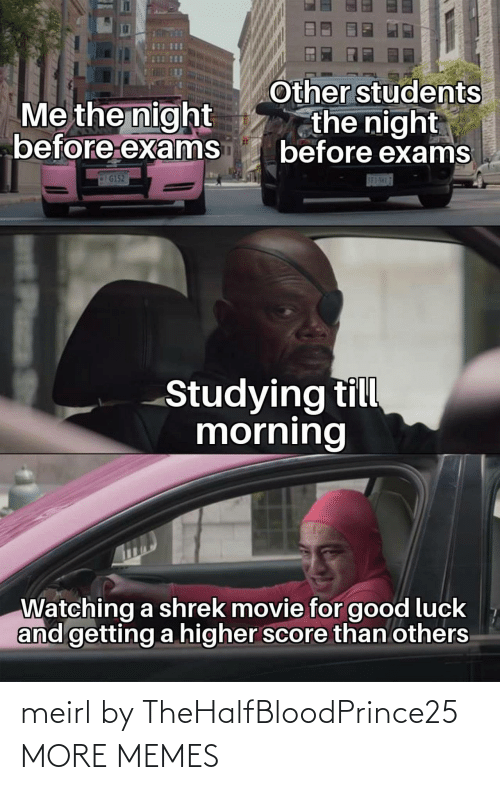 students: Other students  the night  before exams  Me the night  before exams  G152  S83-5H17  Studying till  morning  Watching a shrek movie for good luck  and getting a higher score than others  Plass meirl by TheHalfBloodPrince25 MORE MEMES