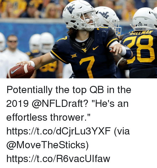 """Memes, 🤖, and Top: OUNTAINEERS Potentially the top QB in the 2019 @NFLDraft?  """"He's an effortless thrower."""" https://t.co/dCjrLu3YXF (via @MoveTheSticks) https://t.co/R6vacUIfaw"""