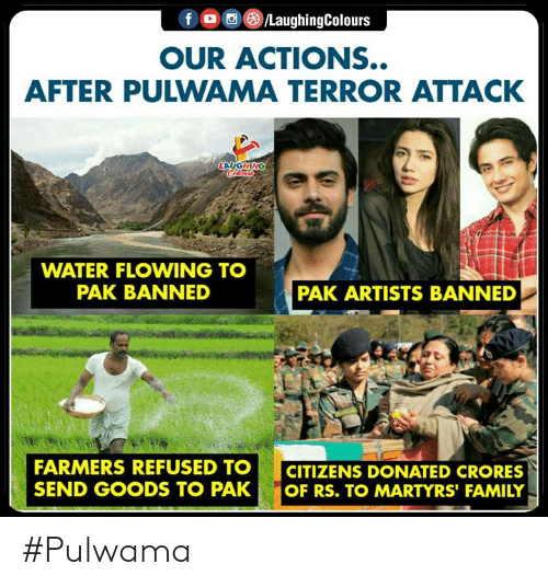 Goods: OUR ACTIONS..  AFTER PULWAMA TERROR ATTACK  WATER FLOWING TO  PAK BANNED  PAK ARTISTS BANNED  FARMERS REFUSED TOCITIZENS DONATED CRORES  SEND GOODS TO PAK OF RS. TO MARTYRS' FAMILY #Pulwama