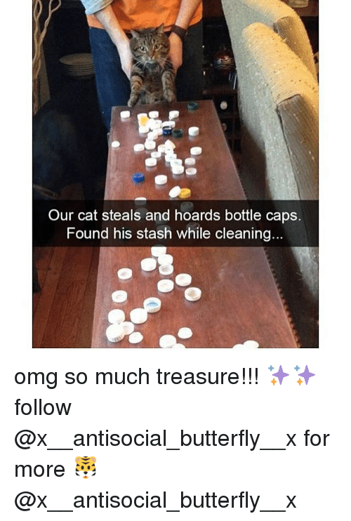 Antisociable: Our cat steals and hoards bottle caps.  Found his stash while cleaning... omg so much treasure!!! ✨✨follow @x__antisocial_butterfly__x for more 🐯 @x__antisocial_butterfly__x