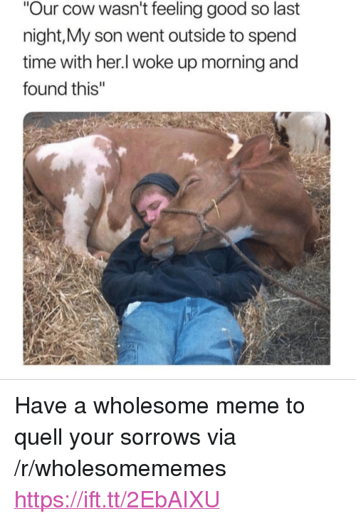 "quell: Our cow wasn't feeling good so last  night,My son went outside to spend  time with her.l woke up morning and  found this"" <p>Have a wholesome meme to quell your sorrows via /r/wholesomememes <a href=""https://ift.tt/2EbAIXU"">https://ift.tt/2EbAIXU</a></p>"