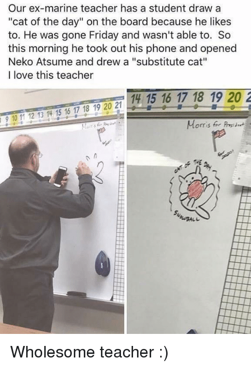 "Friday, Love, and Phone: Our ex-marine teacher has a student draw a  ""cat of the day"" on the board because he likes  to. He was gone Friday and wasn't able to. So  this morning he took out his phone and opened  Neko Atsume and drew a ""substitute cat""  I love this teacher  14 15 16 17 18 19 20 2  910 11 12 13 14 15 16 17 18 19 20 2  Morris for Pres Wholesome teacher :)"