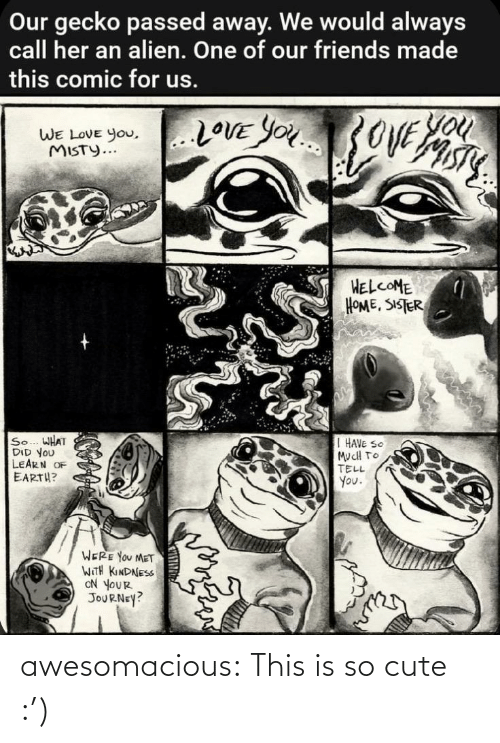 Were You: Our gecko passed away. We would always  call her an alien. One of our friends made  this comic for us.  You  20VE YOU3OVE  WE LOVE you,..LOVE YOu  WE LOVE You,  MISTY...  HELCOME  HOME, SISTER  So... WHAT  DID YOU  LEARN OF  EARTH?  I HAVE SO  MucH TO  TELL  You.  WERE YOU MET  WITH KINDNESS  ON YOUR  JOURNEY? awesomacious:  This is so cute :')