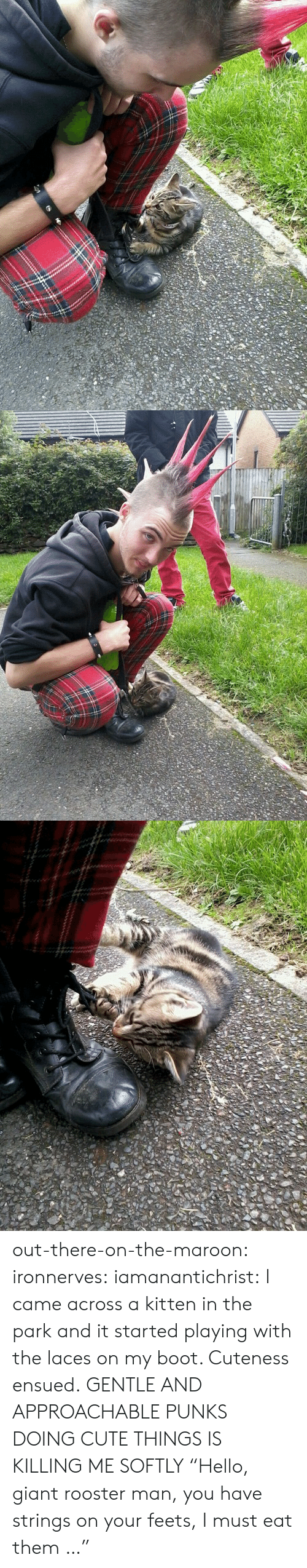 """Booted: out-there-on-the-maroon:  ironnerves:  iamanantichrist:  I came across a kitten in the park and it started playing with the laces on my boot. Cuteness ensued.  GENTLE AND APPROACHABLE PUNKS DOING CUTE THINGS IS KILLING ME SOFTLY  """"Hello, giant rooster man, you have strings on your feets, I must eat them …"""""""