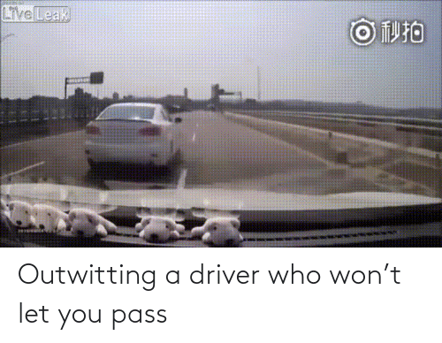 Who Won: Outwitting a driver who won't let you pass