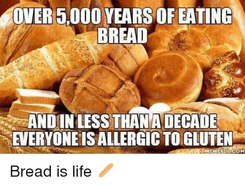Life, Memes, and Gluten: OVER 5,000 YEARS OF EATING  BREAD  ANDINLESS THANA DECADE  EVERYONE IS ALLERGIC TO GLUTEN Bread is life 🥖