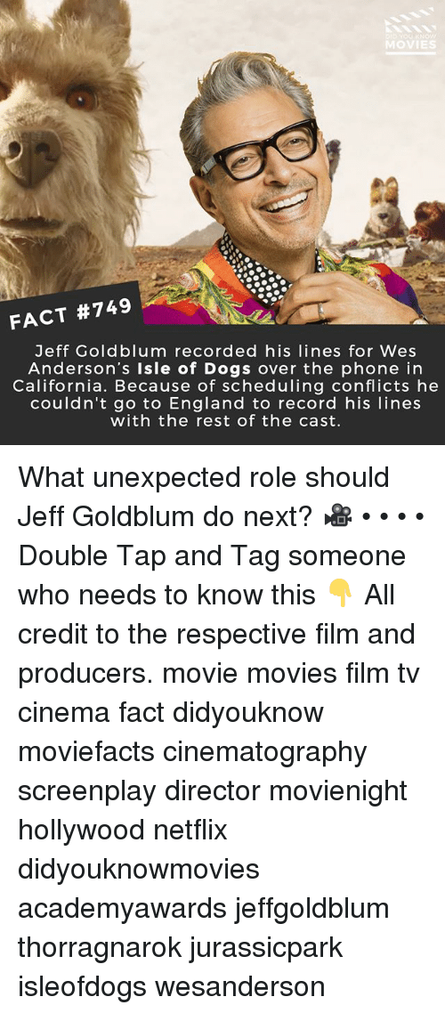 Dogs, England, and Memes: OVIES  FACT #749  Jeff Goldblum recorded his lines for Wes  Anderson's Isle of Dogs over the phone in  California. Because of scheduling conflicts he  couldn't go to England to record his lines  with the rest of the cast. What unexpected role should Jeff Goldblum do next? 🎥 • • • • Double Tap and Tag someone who needs to know this 👇 All credit to the respective film and producers. movie movies film tv cinema fact didyouknow moviefacts cinematography screenplay director movienight hollywood netflix didyouknowmovies academyawards jeffgoldblum thorragnarok jurassicpark isleofdogs wesanderson