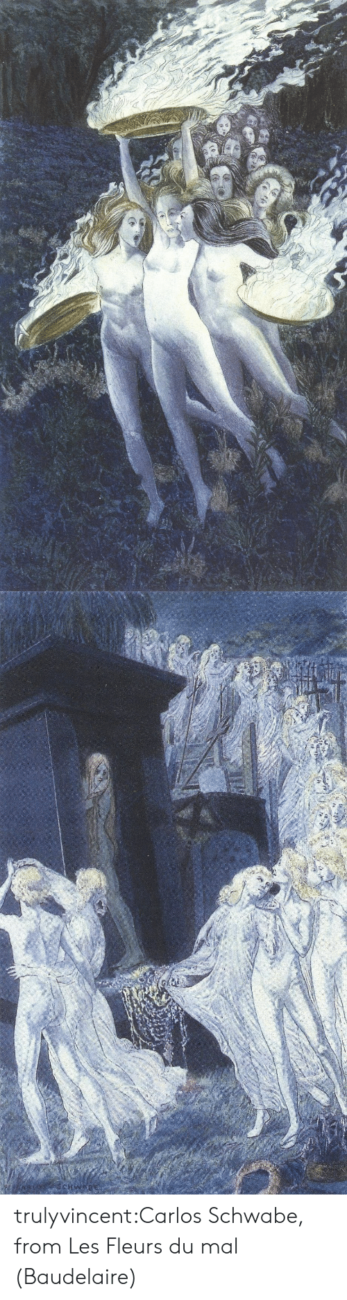 Tumblr, Blog, and Com: OWAR trulyvincent:Carlos Schwabe, from Les Fleurs du mal (Baudelaire)