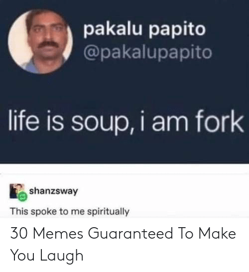 Life, Memes, and Soup: pakalu papito  @pakalupapito  life is soup, i am fork  shanzsway  This spoke to me spiritually 30 Memes Guaranteed To Make You Laugh