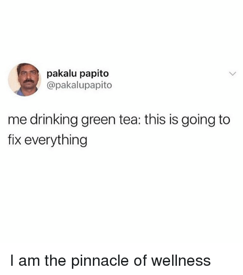 Pinnacle: pakalu papito  @pakalupapito  me drinking green tea: this is going to  fix everything I am the pinnacle of wellness