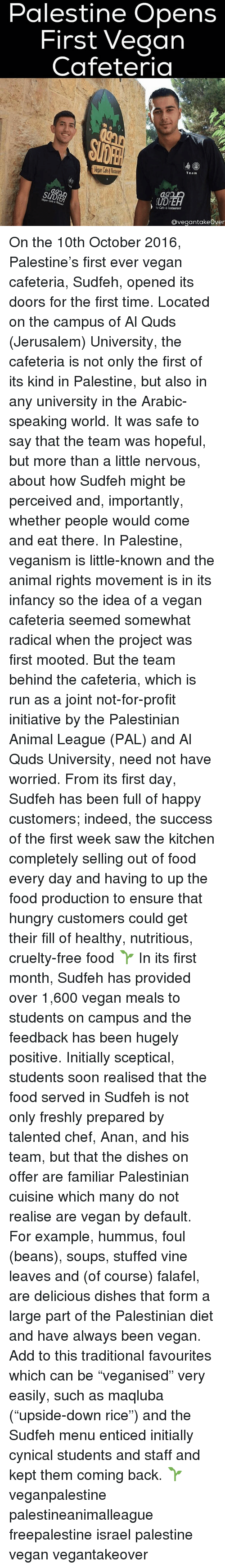 """Memes, Cynical, and Dish: Palestine Opens  First Vegan  Cafeteria  Team  Vegan Cafe 6  Cafe &lestaurant  Ovegantakeover On the 10th October 2016, Palestine's first ever vegan cafeteria, Sudfeh, opened its doors for the first time. Located on the campus of Al Quds (Jerusalem) University, the cafeteria is not only the first of its kind in Palestine, but also in any university in the Arabic-speaking world. It was safe to say that the team was hopeful, but more than a little nervous, about how Sudfeh might be perceived and, importantly, whether people would come and eat there. In Palestine, veganism is little-known and the animal rights movement is in its infancy so the idea of a vegan cafeteria seemed somewhat radical when the project was first mooted. But the team behind the cafeteria, which is run as a joint not-for-profit initiative by the Palestinian Animal League (PAL) and Al Quds University, need not have worried. From its first day, Sudfeh has been full of happy customers; indeed, the success of the first week saw the kitchen completely selling out of food every day and having to up the food production to ensure that hungry customers could get their fill of healthy, nutritious, cruelty-free food 🌱 In its first month, Sudfeh has provided over 1,600 vegan meals to students on campus and the feedback has been hugely positive. Initially sceptical, students soon realised that the food served in Sudfeh is not only freshly prepared by talented chef, Anan, and his team, but that the dishes on offer are familiar Palestinian cuisine which many do not realise are vegan by default. For example, hummus, foul (beans), soups, stuffed vine leaves and (of course) falafel, are delicious dishes that form a large part of the Palestinian diet and have always been vegan. Add to this traditional favourites which can be """"veganised"""" very easily, such as maqluba (""""upside-down rice"""") and the Sudfeh menu enticed initially cynical students and staff and kept them coming back. 🌱 veganpalesti"""