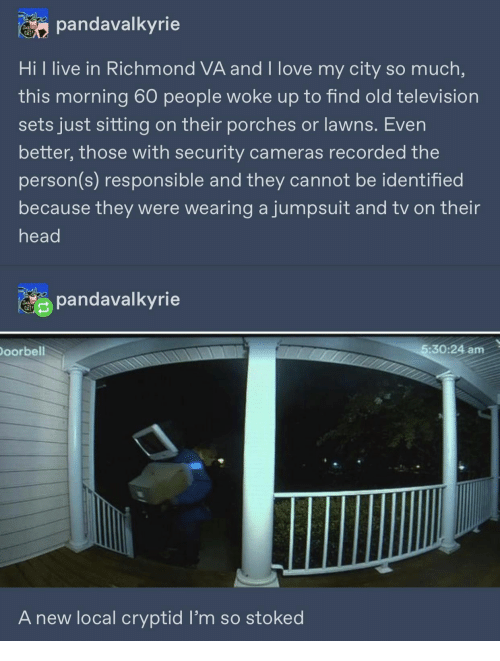 Head, Love, and Live: pandavalkyrie  Hi l live in Richmond VA and I love my city so much,  this morning 60 people woke up to find old television  sets just sitting on their porches or lawns. Even  better, those with security cameras recorded the  person(s) responsible and they cannot be identified  because they were wearing ajumpsuit and tv on their  head  pandavalkyrie  Doorbell  5:30:24 am  A new local cryptid l'm so stoked
